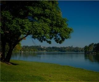 Passagem de onibus da Pássaro Verde de Ribeirao Preto para Belo Horizonte