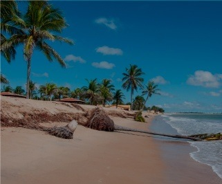 Passagem de onibus da Progresso de Recife para Natal